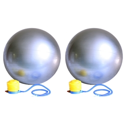 65cm Yoga Stability Versa Exercise Ball Pair