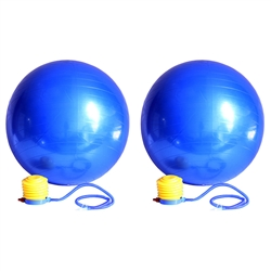 75cm Yoga Stability Versa Exercise Ball Pair